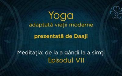 Meditația: de la a gândi la a simți – video